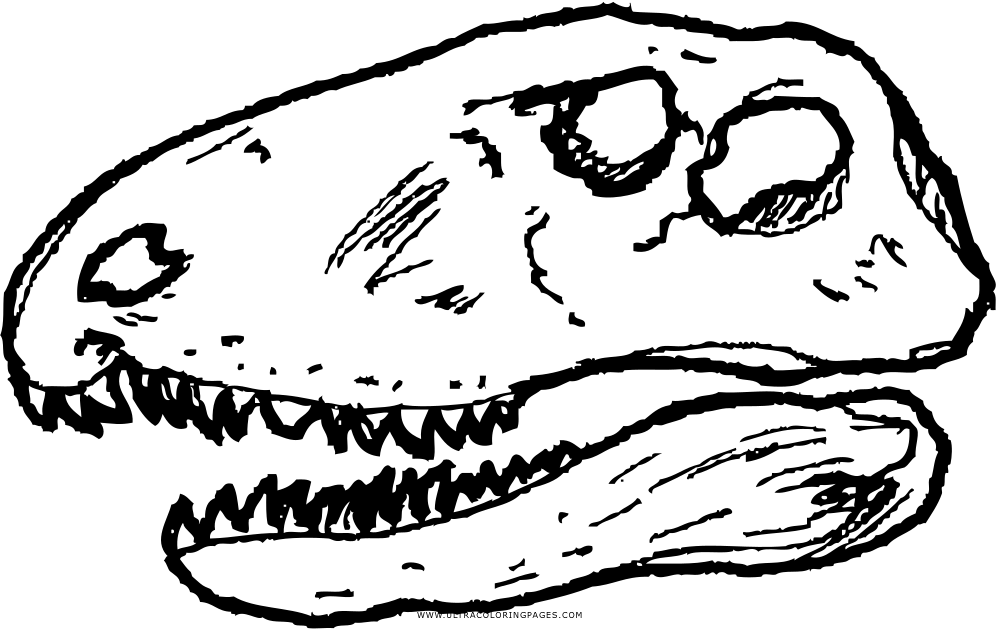 dimetrodon skull Coloring Page